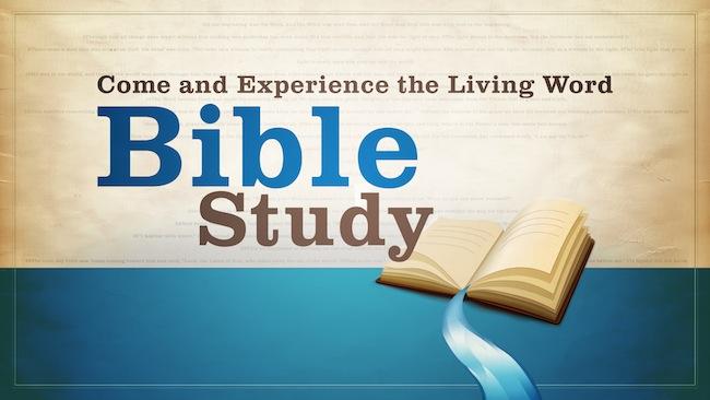 Bible Study 4x A Week